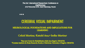 Обложка Cerebral visual impairment. Neurological foundations and implications for learning
